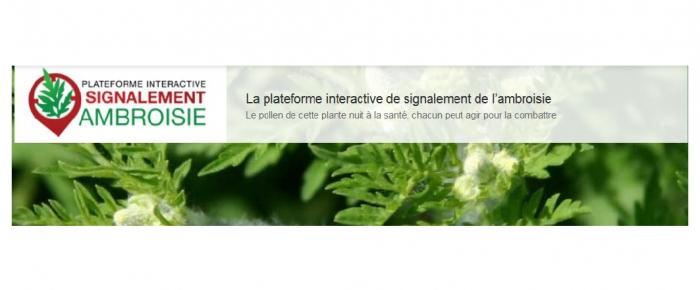 LA PLATEFORME INTERACTIVE DE SIGNALEMENT DE L'AMBROISIE